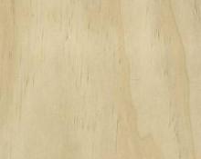 dřevo Accoya®