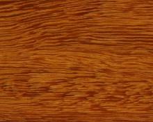 Tropické dřevo